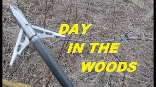 Interesting Finds While Shed Hunting - Video Youtube
