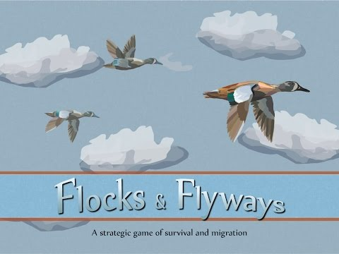 Flocks & Flyways: How to play overview
