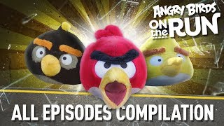 Angry Birds On The Run | All Episodes   Total Mashup Special