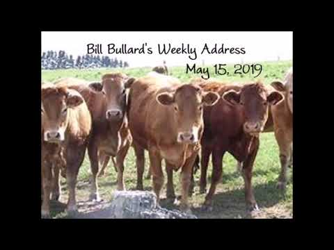 The Story Behind R-CALF USA's Beef Checkoff Lawsuit: The Governments Refusing to Use the Money
