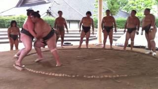 平成22年8月七尾合宿拓錦舛東欧01