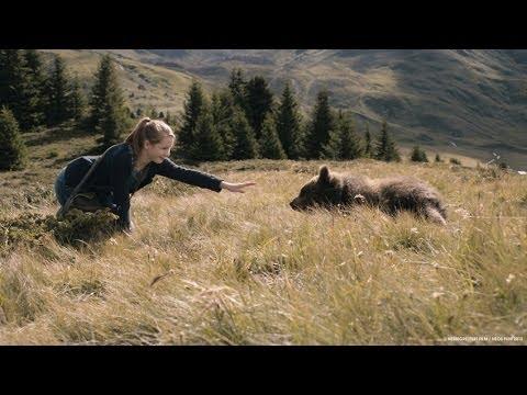 Clara és a medvék titka online