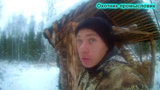 Охота на соболя с лайками день 3-4 ЧАСТЬ 4