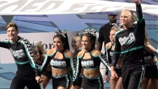 Cheer Extreme Coed Elite Showcase 2016