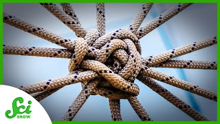 How Knots Help Us Understand the World