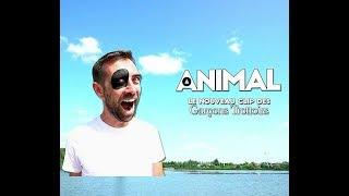 Les Garçons Trottoirs - ANIMAL [clip officiel]