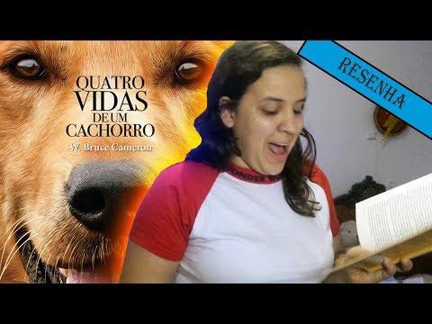 RESENHA - QUATRO VIDAS DE UM CACHORRO /IMAGINARY WORD/