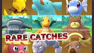 Donphan  - (Pokémon) - Pokémon GO Rare Catching Dragonite Donphan Ursaring Egg Hatchings 10k,5k & more