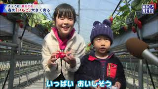 3月20日 びわ湖放送ニュース