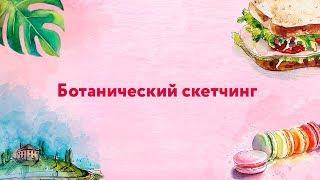 """Бесплатный онлайн курс """"Акварельный скетчинг"""" - Урок 1 (Растения)"""