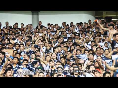 """""""Rayados vs Veracruz, Nivel de cancha, Jornada 7 CL16"""" Barra: La Adicción • Club: Monterrey"""