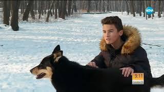 """БЪЛГАРСКИЯТ """"ХАЧИКО"""": Кучето, което чака починалата си стопанка - Събуди се (28.01.2018)"""