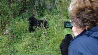 An African Safari Is Cheaper Than You Think