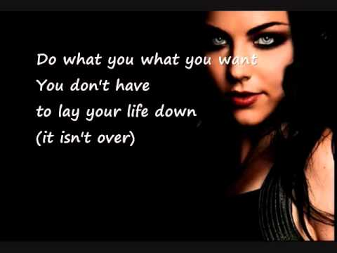 musica da evanescence what you want