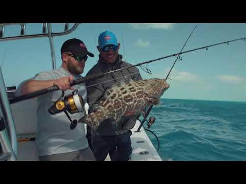 Penn Spinfisher VI Spinning pergetőorsó videó