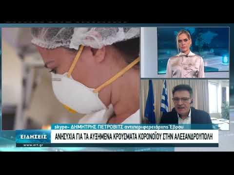 Συνέντευξη με τον αντιπεριφερειάρχη Έβρου Δ. Πέτροβιτς | 10/11/20 | ΕΡΤ