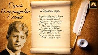"""Стихотворение С.А. Есенин """"Бабушкины сказки"""" (Стихи Русских Поэтов) Аудио Стихи Слушать Онлайн"""