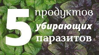 ТОП 5 Продуктов Убирающих Паразитов Навсегда. Как быстро вывести паразитов