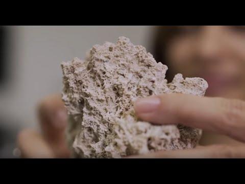CENPES | Camila dos Anjos e suas pesquisas sobre rochas