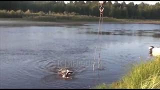 В Урае (ХМАО) Хонда затонула вместе с людьми. Трое погибли.