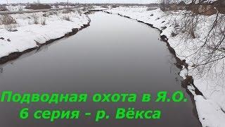 Отчеты о рыбалке в ярославской области лесохот река векса