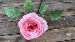 Crepe Paper Rose Tutorial | Hướng Dẫn Làm Hoa Hồng Tô Màu | Rita Handmade