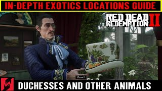 Red Dead Redemption 2 All Exotics Locations Guide - Duchesses and other Animals