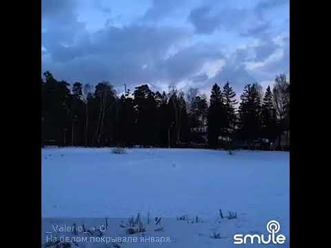 На белом, белом покрывале января...
