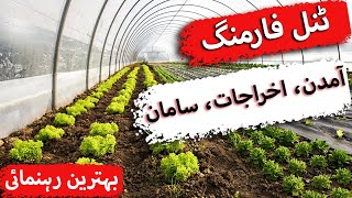 Tunnel farming in Pakistan in Urdu, expenses,income, vegetables types in Pakistan