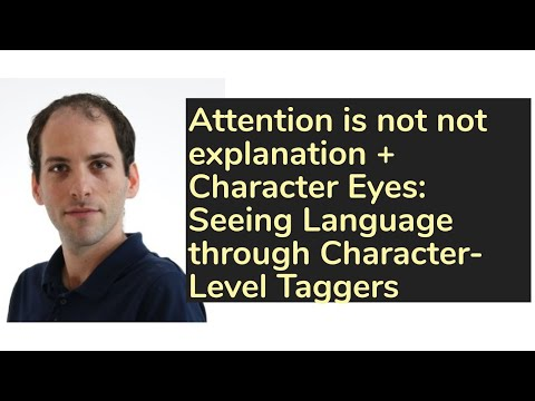 Attention is not not explanation + Character Eyes: Seeing Language through Character-Level Taggers