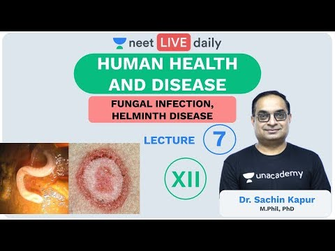 Hpv vaccine cervarix