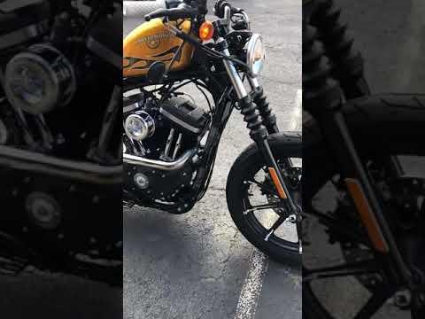 2016 Harley-Davidson XL883 IRON in Greenbrier, Arkansas - Video 1