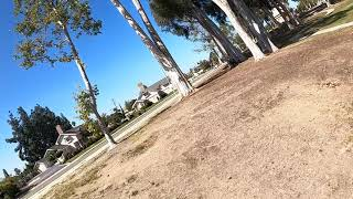 Free as a bird flying with DJI fpv