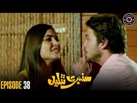 Sunehri Titliyan | Episode 38 | Turkish Drama | Hande Ercel | Best Pakistani Dramas