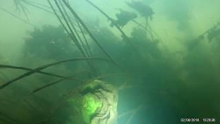 Рыбалка на реке сукромка в мытищах