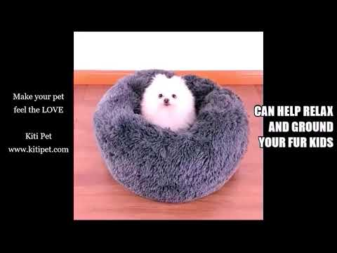 Best Pet Bed Ever for Dog and Cat