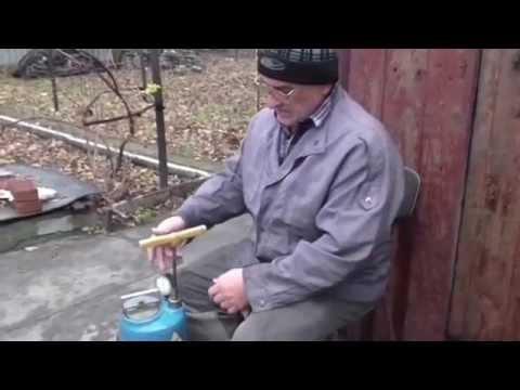 Как разводить железный купорос для обработки винограда