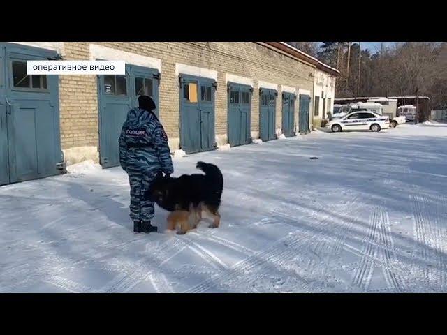 Служебный пёс раскрыл два преступления