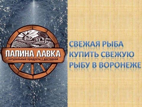 Свежая рыба Купить свежую рыбу в Воронеже