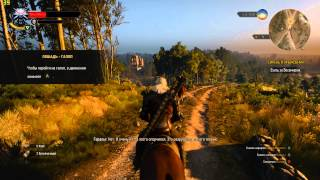 The Witcher 3 Wild Hunt GTX 770 Ultra Settings 1080p