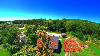 First Colors of Autumn | Forck-In Quad FPV Freestyle Insta360 GO