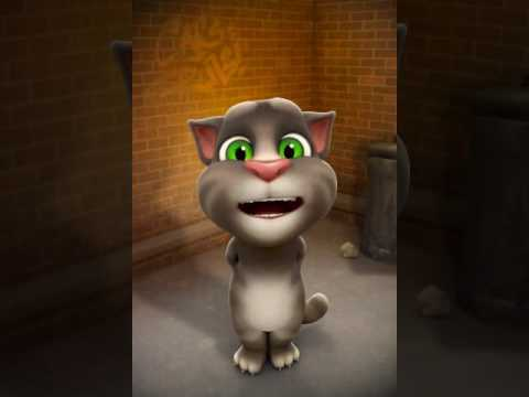 Talking Tom sings body like a back road by Sam Hunt