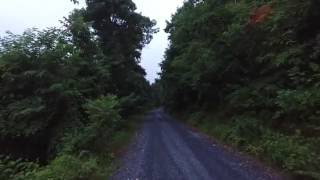 Tuscarora State Forest