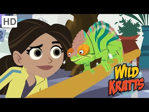 Wild Kratts - How to Protect Endangered Animal Species