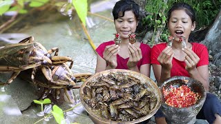Wow! Insects In The Water Flow It Is Delicious Food, Have You Ever Eaten These Insects?