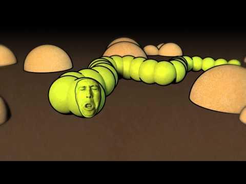 Gamot laban bulating parasito