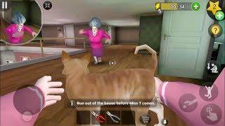 Scary Teacher 3D Version 5.3.4 | Tani Save The Cat