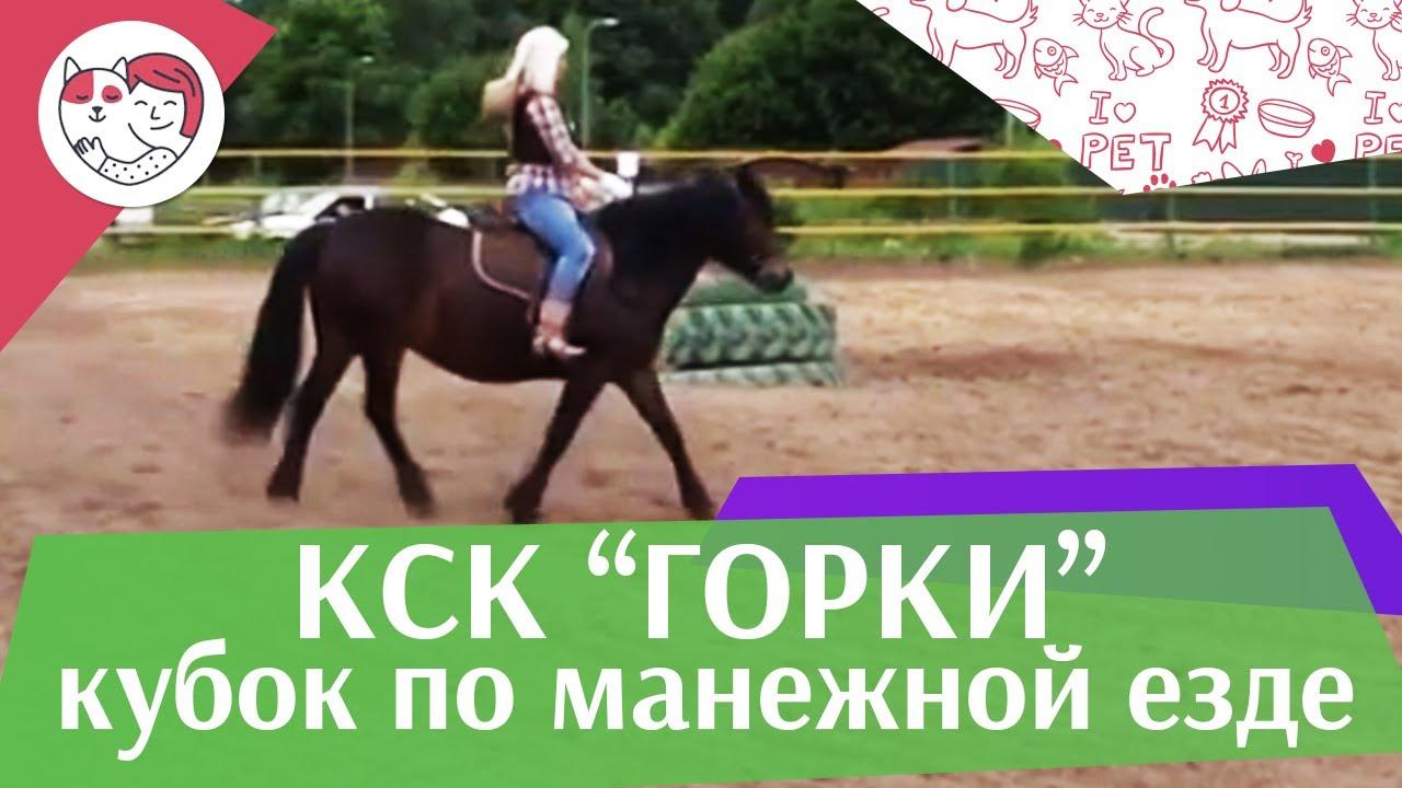 Летний кубок КСК Горки по манежной езде КЮР часть 4 на ilikepet