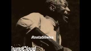 Son House - Grinnin' In Your Face (RostaSliwka Remix)