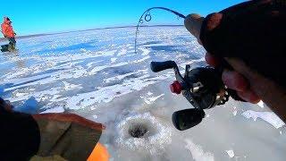 Все о рыбалка рыбинском водохранилище 2020